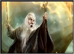Gandalf, Gra, Guardians of Middle-Earth